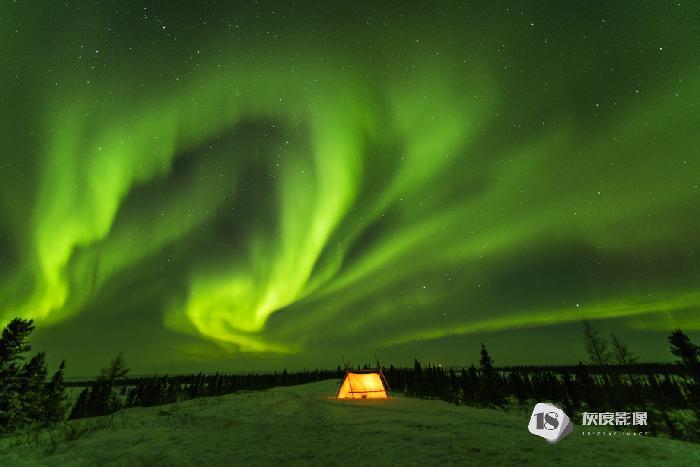 北极光 Aurora 叶丹蕾/DANLEI YE